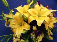 bouquets_flowers_pictures_1600x1200_t1.jpg